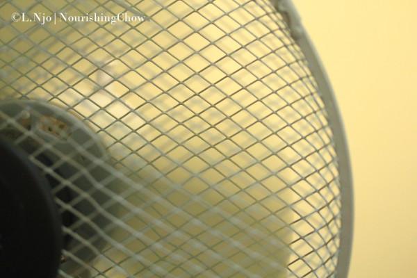 Running fan