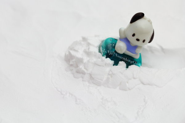 Pochacco on snow
