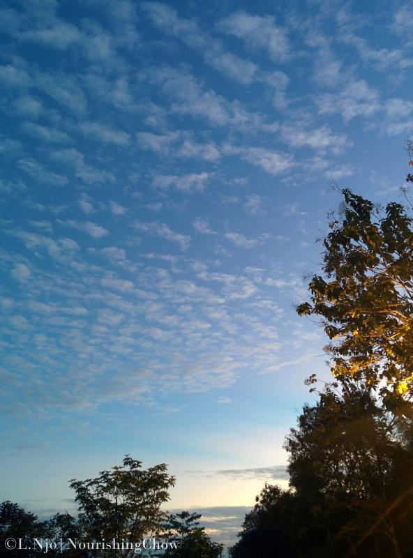 clouds, dawn, sky