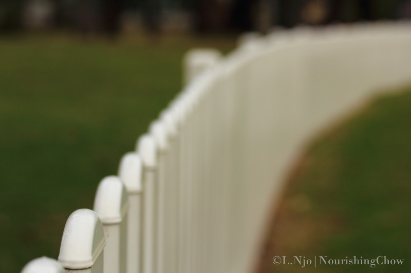 white picket fence, football, oval, curvy