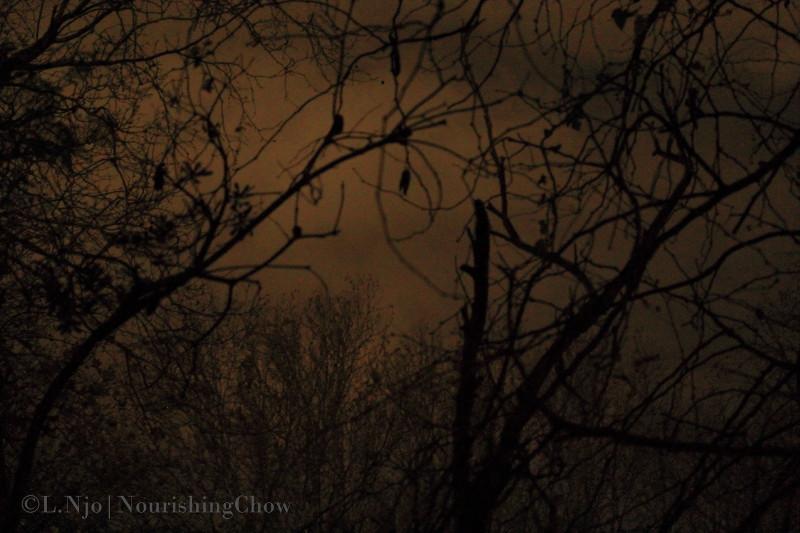 Eerie, sombre dusk